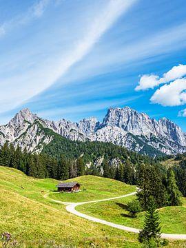 Gezicht op de Litzlalm met hut in Oostenrijk van Rico Ködder