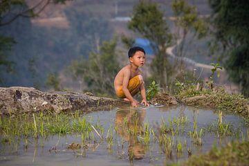 Vietnamesisches Kind, das auf dem Reisgebiet - Sa Pa, Vietnam spielt von