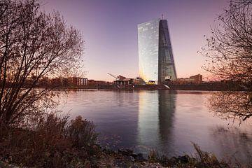 Europäischen Zentralbank spiegelt sich im Main bei Sonnenuntergang von Markus Lange