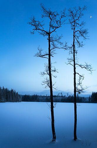 Zweeds meertje met avondlicht van Arthur van Iterson