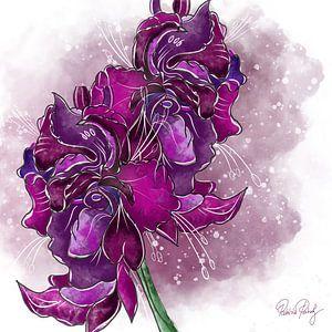 Blumenmotiv - Gladiolen