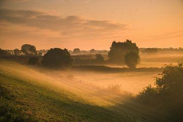 Sonnenaufgang im Ooij (Nebel) von Cocky Anderson