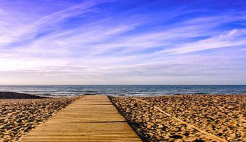 Auf das Meer starren, Nordseestrand, Koksijde von Manuel Declerck