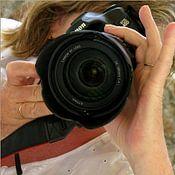 lieve maréchal photo de profil