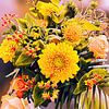 Bouquet de fleurs coloré sur Digital Art Nederland Aperçu