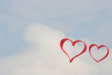 Verliefde vliegers van Jan Mulder