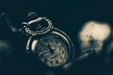 Le temps est précieux 5 sur Kirsten Scholten