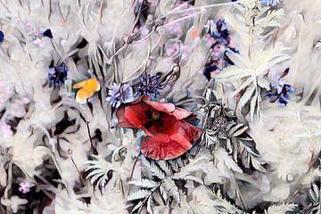 Roter Klappmohn Aquarellmalerei
