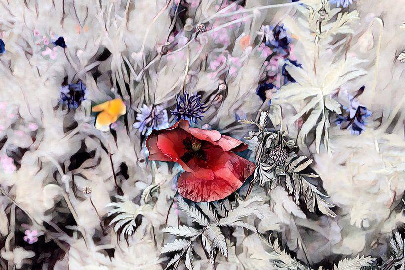 Roter Klappmohn Aquarellmalerei von Patricia Piotrak