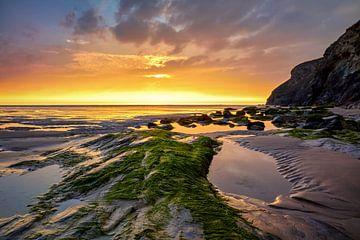 Een strand in Cornwall van Silvio Schoisswohl
