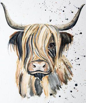 Schotse Hooglander aquarel in kleur van Bianca ter Riet