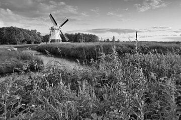 Molen, Nederland van