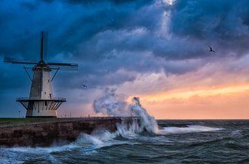 Quand la tempête arrive sur Sander Poppe