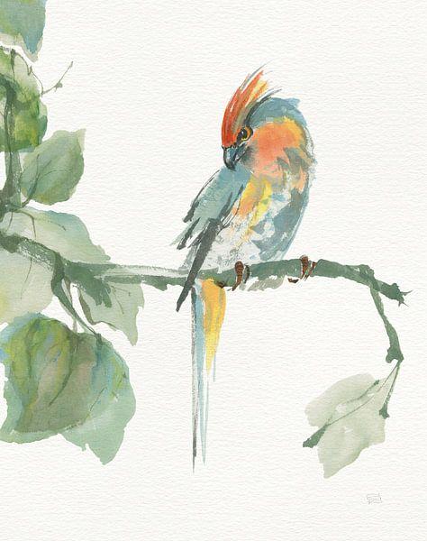 Crested Cockatoo v2, Chris Paschke von Wild Apple