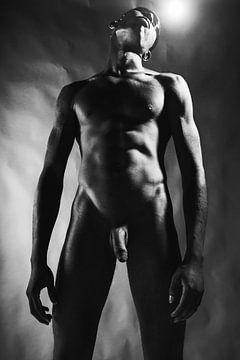 Sehr schöner dunkler nackter Mann mit schön bemuskeltem Körper. #E9427 von william langeveld