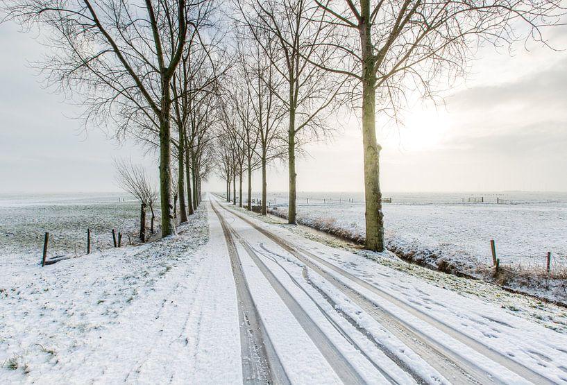 Winter  van Marc Broekman
