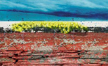 Dutch tricolor mit Tulpen von Rietje Bulthuis