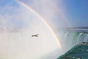 Niagara watervallen van