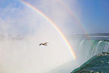 Niagara watervallen sur Teuni's Dreams of Reality