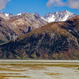 Een eenzame boom in Nieuw Zeeland van René Groenendijk