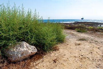 Meeresblick Zypern 2