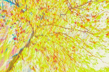 Dicker Baum von Jan Peter Jansen
