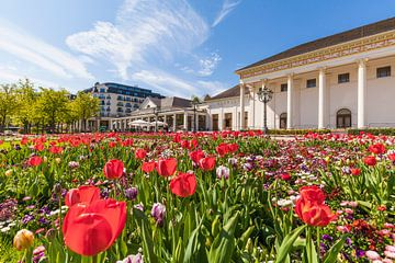 Tulpen in het kuurpark van Baden-Baden in Duitsland van Werner Dieterich