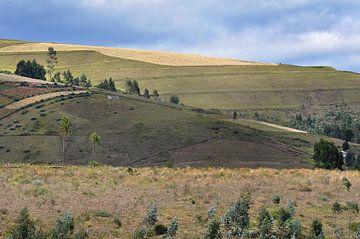Groene heuvels Ecuador van Anouschka Hendriks
