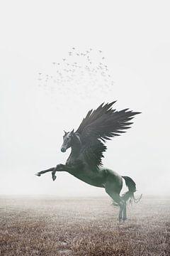 A dark Pegasus von Elianne van Turennout