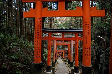 Fushimi Inari-taisha sur Emi Barendse