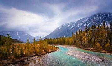 Landschaft in Nationalpark Kootenay, Kanada von Rietje Bulthuis