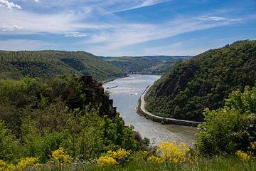 Uitzicht op het dal van de Middenrijn bij Sankt Goarhausen van David Esser