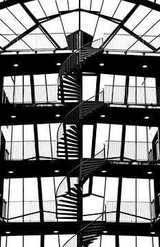 Way Up (Silhouet Trap) van Caroline Lichthart