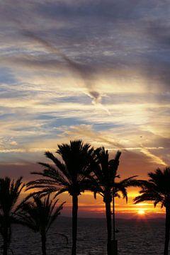 Zonsondergang Palma de Mallorca van Jet Couzijn