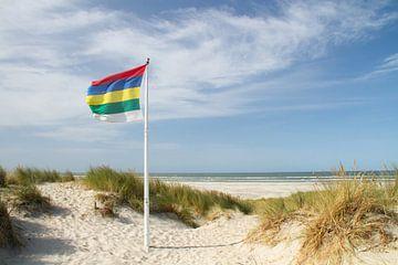 Strand und Dünen von Terschelling #1 von Marianne Jonkman