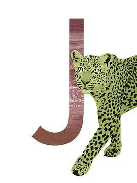 J - Jaguar van Goed Blauw