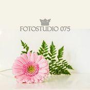 Fotostudio 075 profielfoto