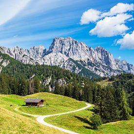 Vue du Litzlalm avec cabane en Autriche sur Rico Ködder