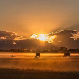 Zonsopkomst op de boerderij #3 van Michiel Leegerstee