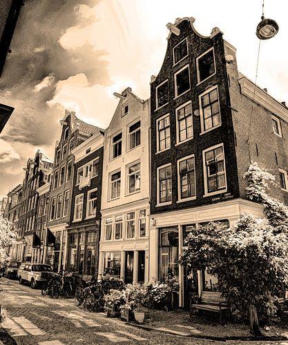 Jordaan Amsterdam Nederland Sepia