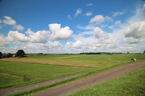 Weite Ansicht über den Zuidplaspolder in Moordrecht, die Niederlande. von