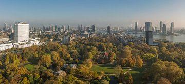 Automne dans le parc à Rotterdam sur MS Fotografie | Marc van der Stelt