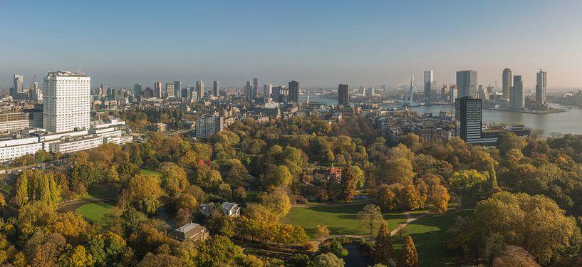 Herfst in het Park in Rotterdam van MS Fotografie   Marc van der Stelt