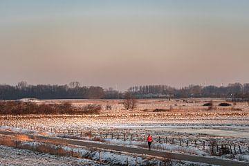 Einsamer Läufer durch die Felder von Percy's fotografie