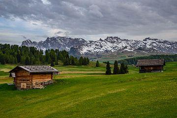 Alpe di Siusi van Michael Blankennagel