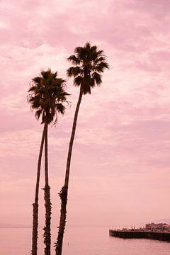 Palmbomen bij Santa Cruz pier, Californië, USA van Ronald Tilleman