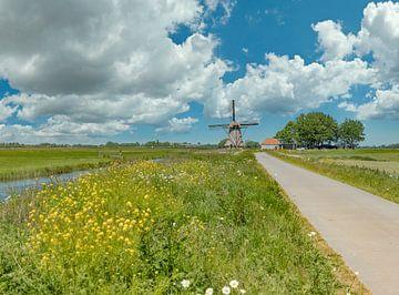 Windmolen De Puollen, Dronryp, Friesland, Nederland van Rene van der Meer