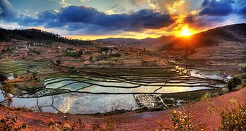 Landbouw reflectie Madagaskar von Dennis van de Water