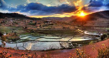 Landbouw reflectie Madagaskar van