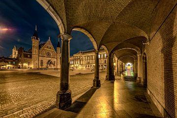 Den Haag - Binnenhof und Ridderzaal von Rene Siebring